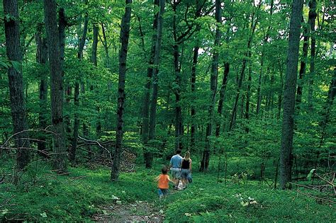 traverse city trails  explore  spring mynorthcom