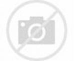 Albert II le Dégénéré — Wikipédia