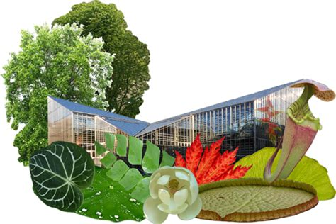 Botanischer Garten Fribourg öffnungszeiten willkommen im botanischen garten der universit 228 t freiburg