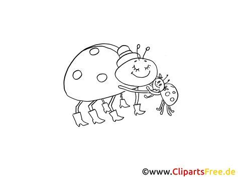 clipart schwarz weiss marienkaefer insekte
