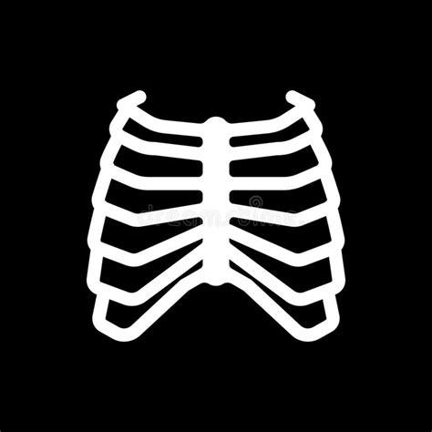 organi gabbia toracica scheletro senza gabbia toracica illustrazione di stock