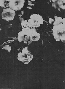 black and white tumblr - Google Search | Black and White ...