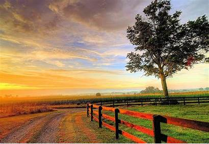 Nature Backgrounds Resolution Field Cool Landscape Amazing