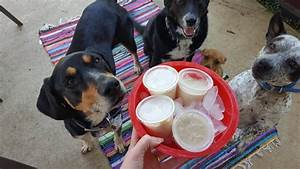 Crazy easy dog treat recipes you have to make my dog39s name for Dog ice cream ingredients