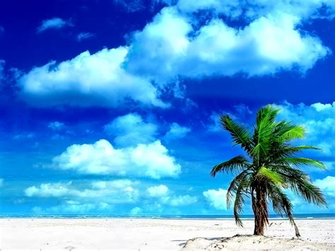 Wallpaper & Pictures Sea Beach Hd Wallpaperes