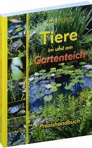 Tiere Im Gartenteich : tiere im und am gartenteich versand rockstuhl ~ Eleganceandgraceweddings.com Haus und Dekorationen