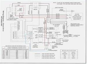 Sw 3547  Duo Therm Furnace Wiring Free Diagram