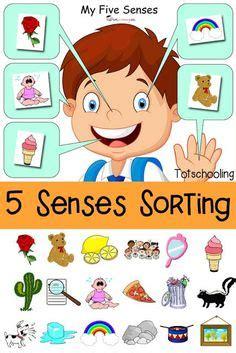 poem no 4 my five senses my five senses the five and 5 | 272dbe3e83d78c4606332cd9ea9dad6f
