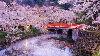 Japan Tokyo Nature 1080 Rivers Bridge 1920