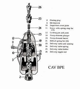 Cav Bpe