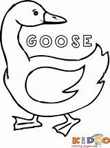 Coloring Pages Geese Goose Popular sketch template