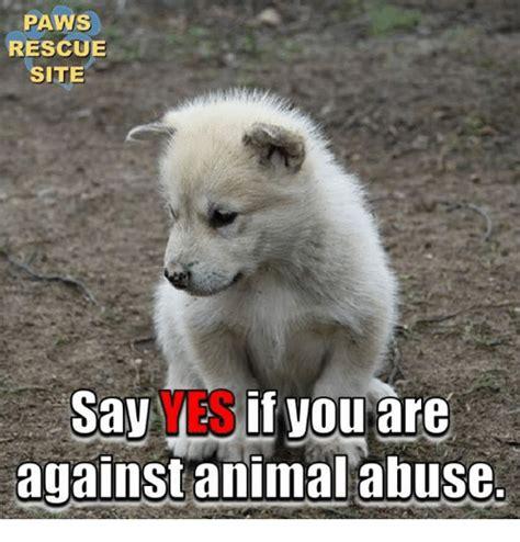 Abuse Memes - 25 best memes about animal abuse animal abuse memes