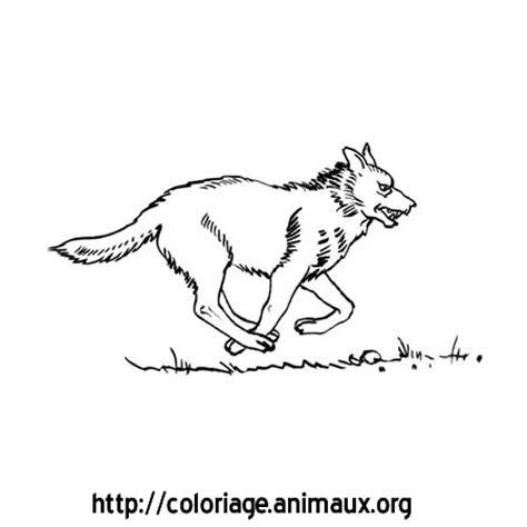 loup qui court coloriage loup qui court sur coloriage animaux org