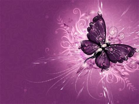 abstract purple butterfly design   backgrounds