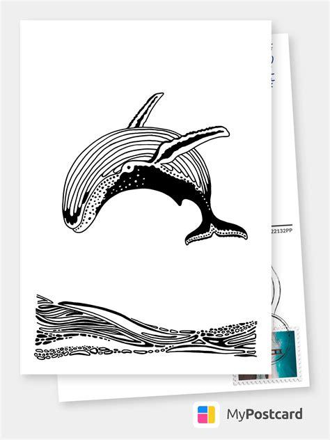 whale kunst fotografien illustrationen echte