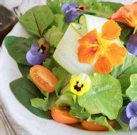 comment cuisiner haricots verts cuisine conseils et astuces pratique fr