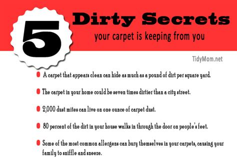 carpet cleaning tips tips on carpet cleaning rug doctor