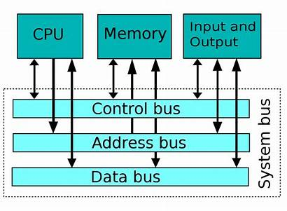 Bus System Wikipedia Computer