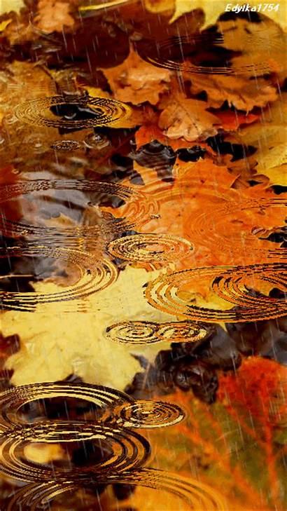 Screensavers Rain Mobile Fall Leaves Raining Effects