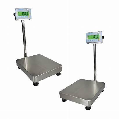 Scales Weighing Afk Floor