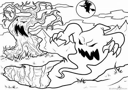 Coloring Halloween Scary Ghost Tree Brujas Noche
