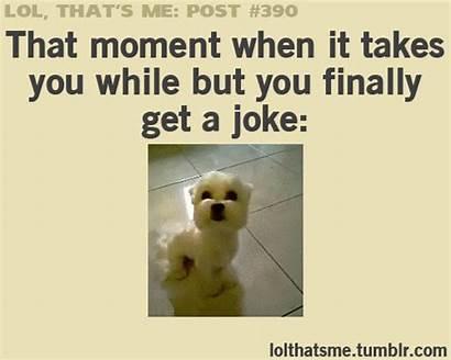Funny True Lol Random Quotes Humor Jokes
