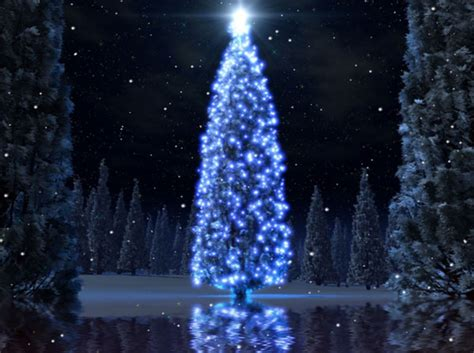 Free Animated Tree Wallpaper - free 3d themes and screensavers tree animated