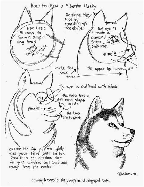 how to draw worksheets for the artist how to draw a