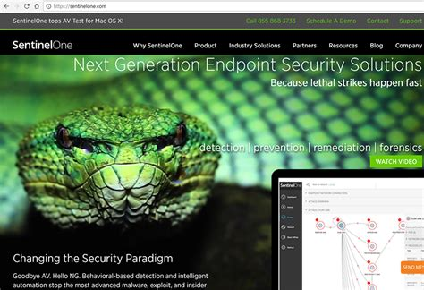 sentinelone secures 70 million for endpoint security converge network digest