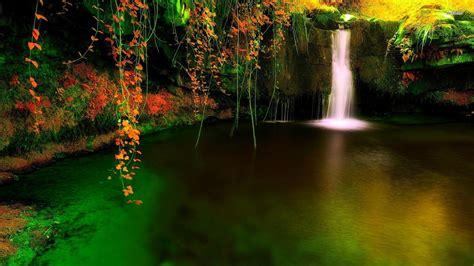 森の滝の洞窟-HDの壁紙プレビュー | 10wallpaper.com
