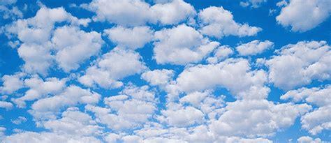 safeguard data   cloud scalar  solutions