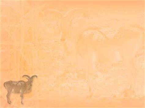 goat  powerpoint templates