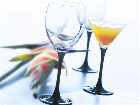 Buy Domino Commercial Wine Glasses