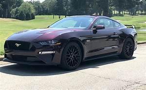 Royal Crimson 2018 Ford Mustang GT Fastback - MustangAttitude.com Photo Detail