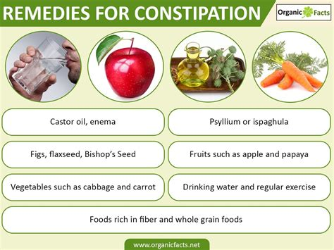 Apa Makanan Yang Dapat Menyebabkan Masalah Sembelit Galena