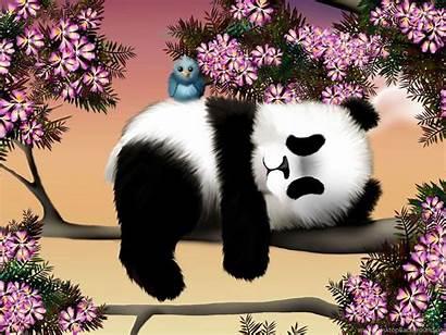Panda Wallpapers Kawaii Desktop Background Relaxing Tree