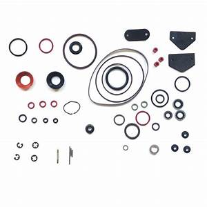 Seal Repair Kit For Stanadyne Db2 Injection Pumps
