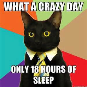 Crazy Busy Work Day Meme