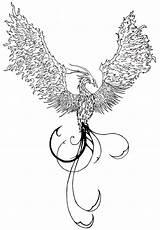 Phoenix Tattoo Rising Coloring Deviantart Tattoos Fire Without Bird Winged Drawing Line Tattooimages Biz Designs Detailed Foenix Waktattoos Uploaded User sketch template