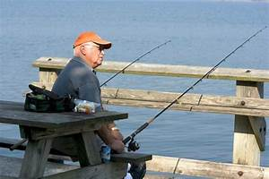 Fishing from shore - Picture of Cayuga Lake, Ithaca ...