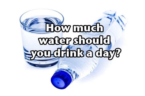 Per Day by How Much Water Should You Drink A Day