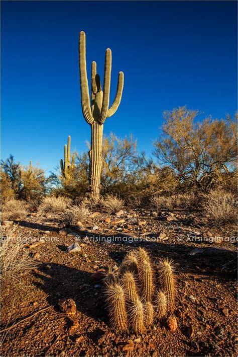 arizona  utah landscape photography road trip