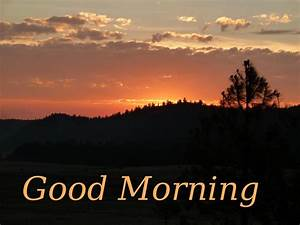 Good Morning Scraps, Pictures, Images, Graphics for ...