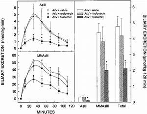 Effect Of Fosfomycin And Foscarnet On The Biliary