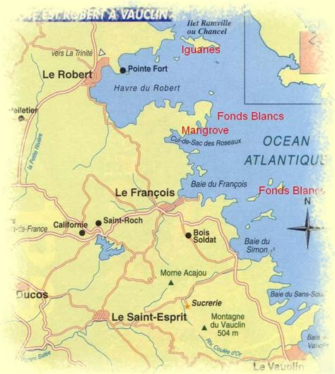 pin fonds blancs martinique on pinterest