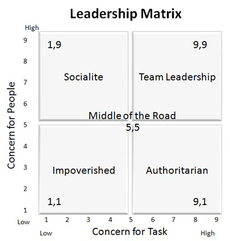 leadership matrix survey