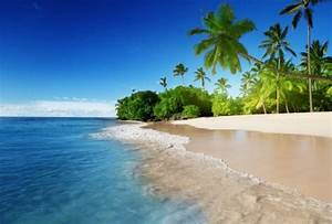 Foto mural Playa Caribe playas ref 47643639