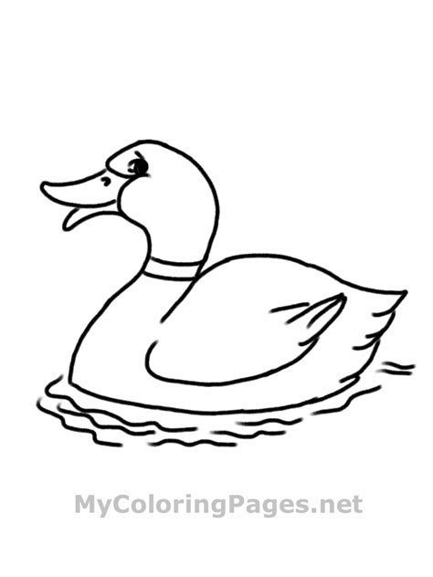 Coloring Book Pdf by Free Printable Duck Coloring Pages For Animal Place