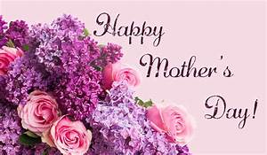 Happy Mothers Day Purple Flower Pink Rose Hd Wallpaper