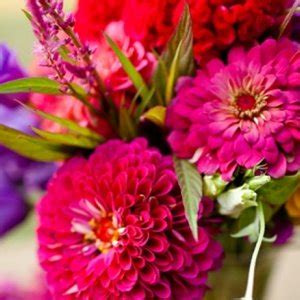 flowers  season april bridalguide